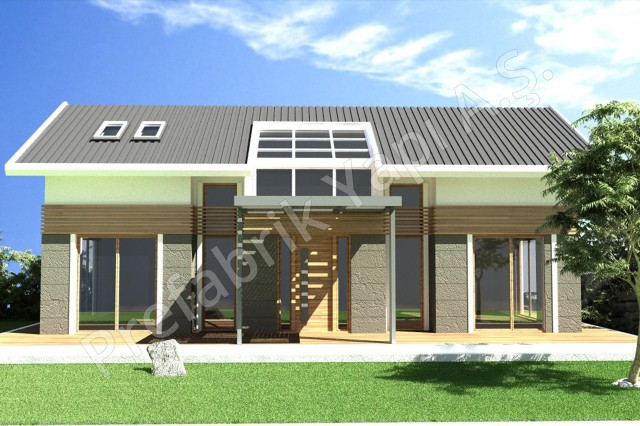 1.5 Storey Villa